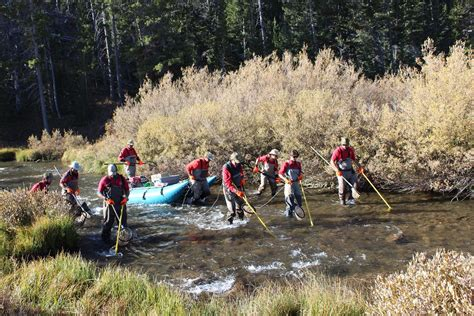 Wyoming Game and Fish Department - Electrofishing on the
