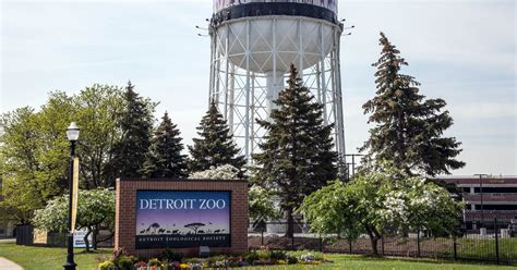 Detroit Zoo, SMART to offer new bus service for visitors