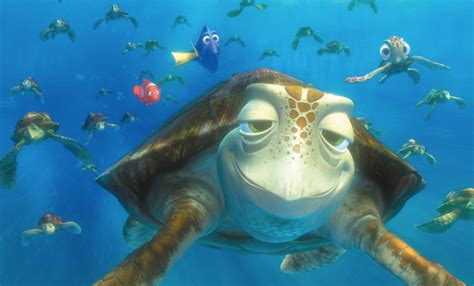 Turtle From Finding Nemo Quotes